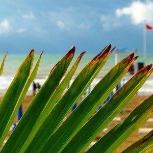 jesolo-beach-10